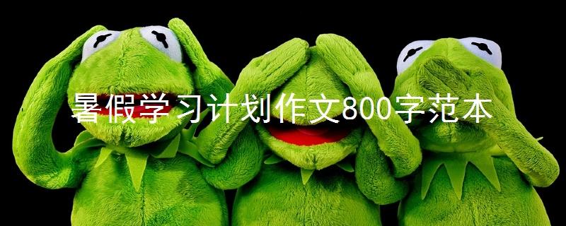 暑假学习计划作文800字范本