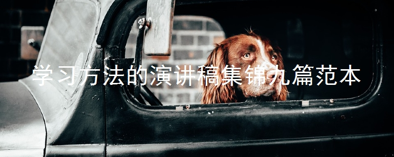 学习方法的演讲稿集锦九篇范本